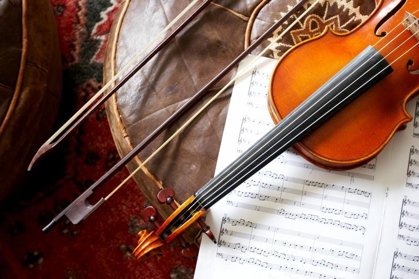 Sunshine Coast Chamber Orchestra