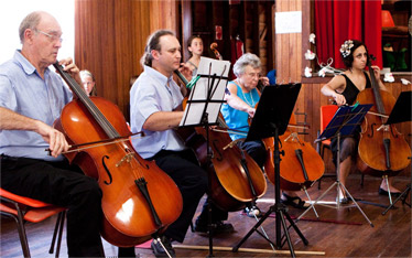 Adult Cello Lessons